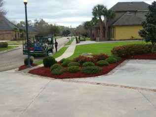 Mulch Flower Beds