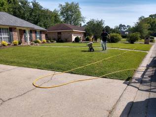 Residential Lawn Spraying